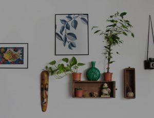 sector decoracion